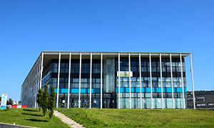 Net Center Pesaro
